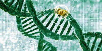 Sterilità, individuata una mutazione genetica implicata