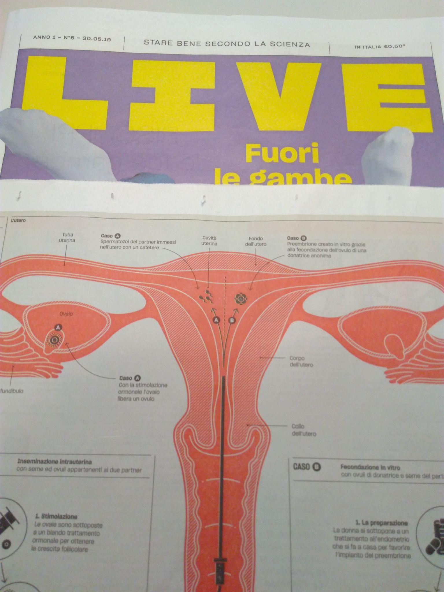 Live – Le Guide- Maternità assitita